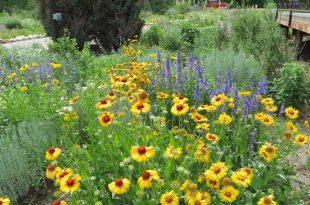 Landschaftsgestaltung mit Colorado Native Plants Konferenz kommt bald