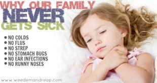 Warum unsere Familie NIE krank wird