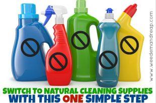 Wechseln Sie mit diesem EINFACHEN Schritt zu einem natürlichen Reinigungszubehör