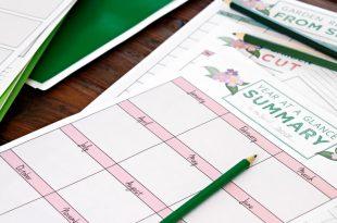 Neuer Anfang! Gartenjournaling und Planung