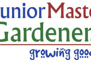 Junior Master Gärtner in Rout County von Jo Smith