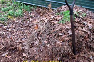 Ein Kompostdrehen = fröhliche Gartenarbeit im Jahr 2013!
