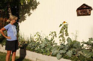 Pflanzen brauchen auch Gefährten Andy Kennedy, Meister Gärtner