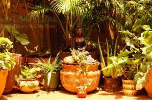 Mein Balkon Garten Makeover
