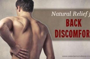 Natürliche Entlastung für Rückenschmerzen