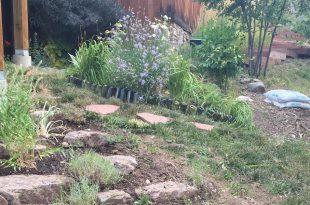 Wie installiere ich einen Steingarten von Barbra Flowers, Master Gardener