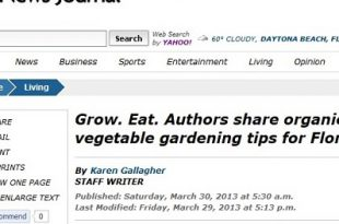 """Ein Rückblick auf """"Organische Methoden für den Gemüseanbau in Florida"""""""
