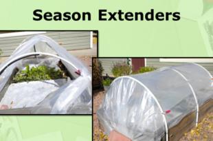Saison-Extender bringen Freshies zu unseren Spring Plates