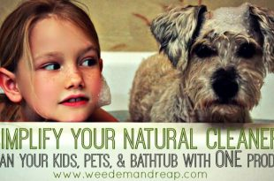 Vereinfachen Sie Ihren natürlichen Reiniger: Reinigen Sie Ihre Kinder, Haustiere und Badewanne mit EINEM Produkt!