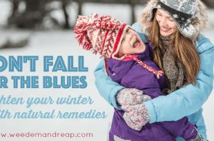 Fallen Sie nicht auf den Blues: Erhellen Sie Ihren Winter mit natürlichen Lösungen