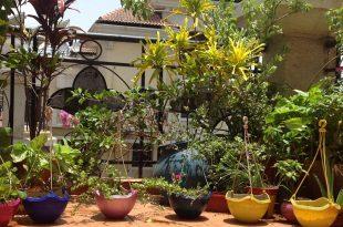 Hängende Körbe in meinem kleinen Balkon Garten