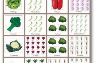 Kostenlose Gemüsegarten Pläne, Layout, Designs und Planung Arbeitsblätter